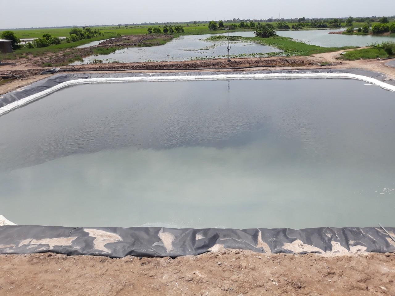 xử lý nước thải chăn nuôi tại Thái Bình