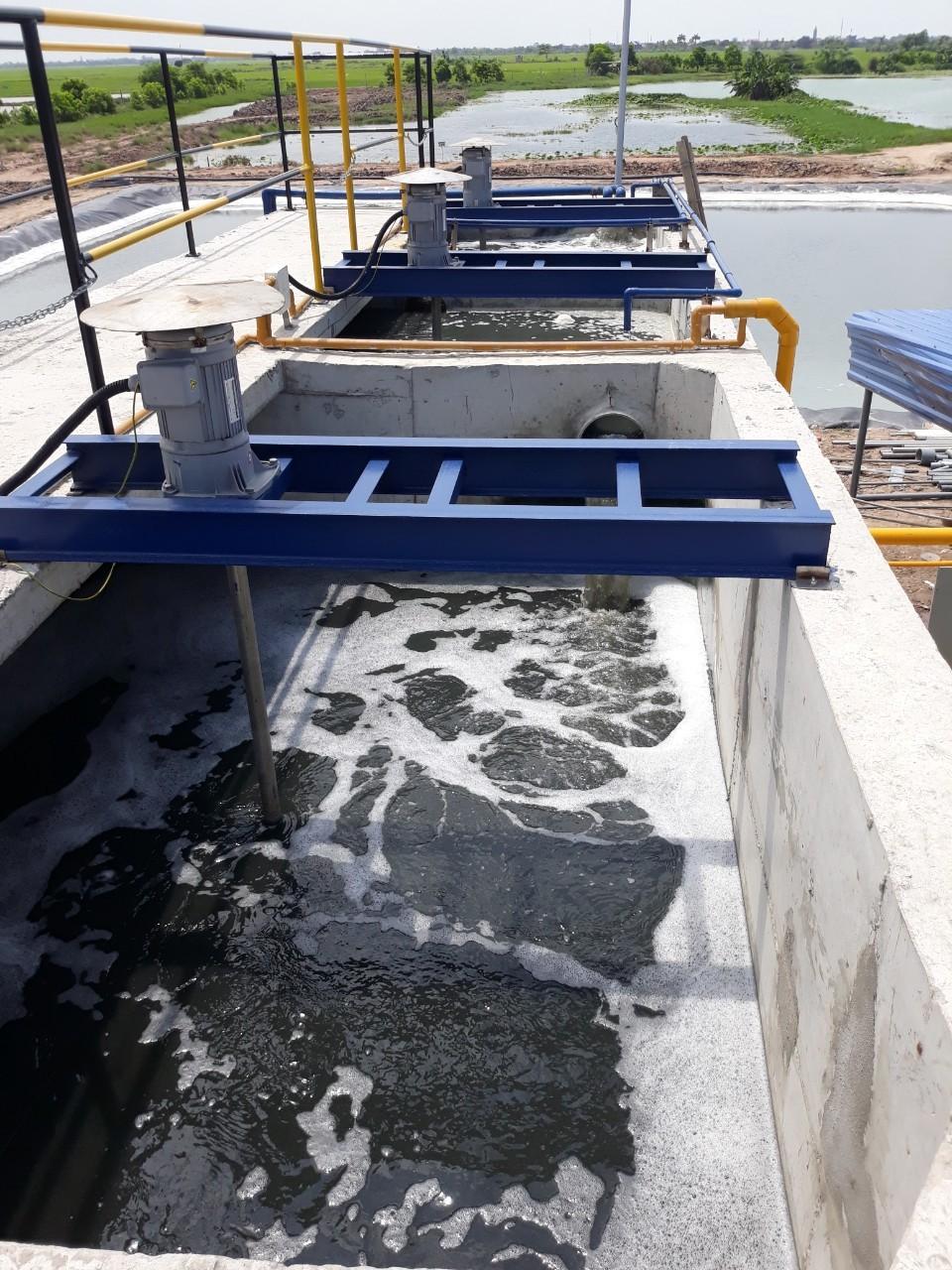 Xử lý nước thải chăn nuôi đạt chuẩn với chi phí thấp
