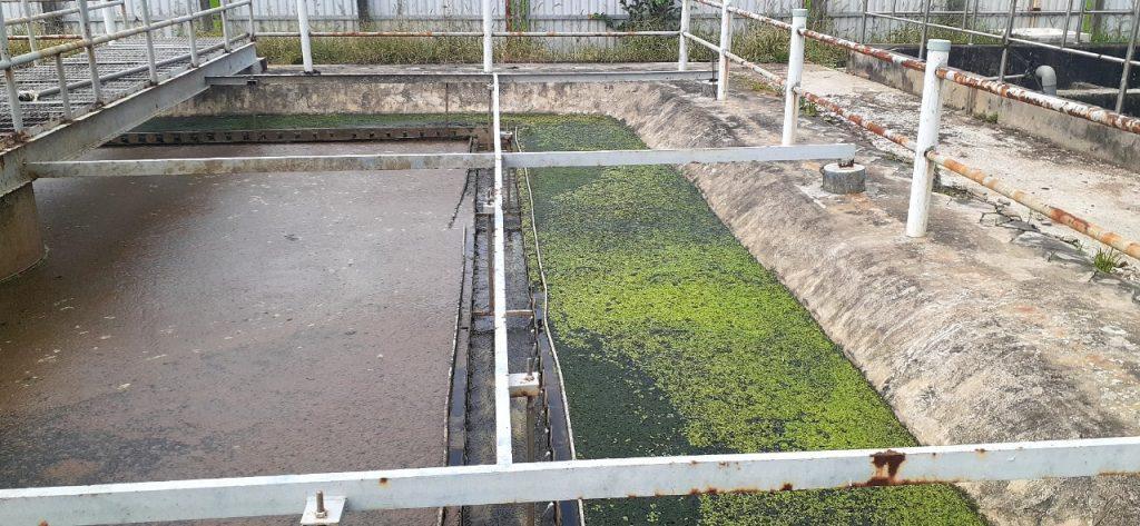 Xử lý nước thải giết mổ gia súc 1200m3 – môi trường Bình Minh