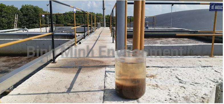 Hình 3. Hệ thống xử lý nước thải chăn nuôi